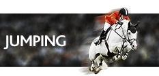 Владимир ТУГАНОВ близок к попаданию в 50 лучших конников мира