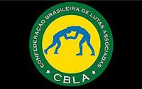 Хетаг ЦАБОЛОВ и Заурбек СИДАКОВ – победители Кубка Бразилии